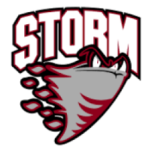 Low Key Fridays - Guelph Storm Hockey Game @ Live & Learn Centre